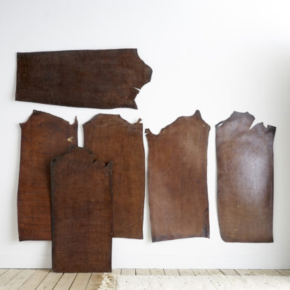 Leather skins