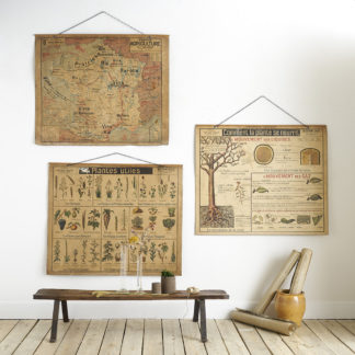 Anciennes affiches scolaires de la collection tableaux muraux d'Arman Colin