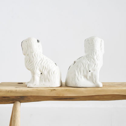 Staffordshire Dogs faïence chiens statuettes